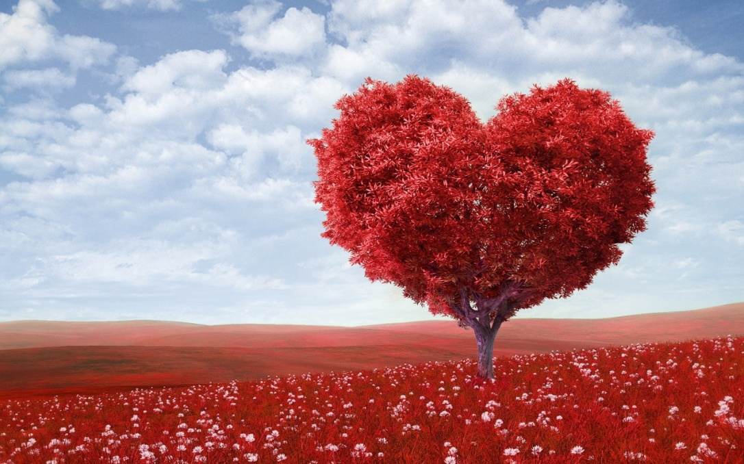 beautiful-heart-wallpaper-hd-38