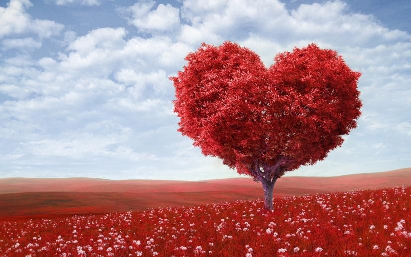 beautiful-heart-wallpaper-hd-38