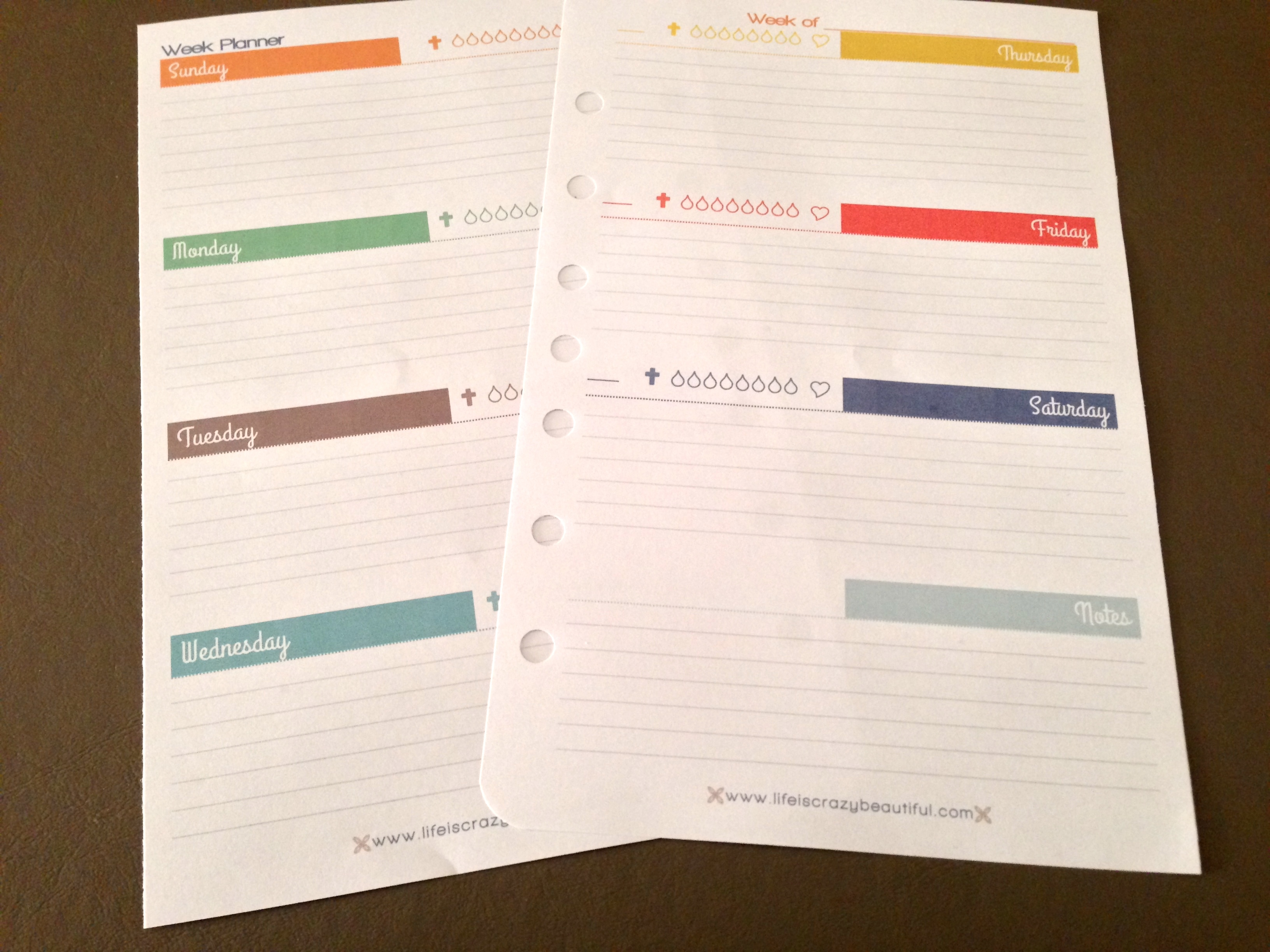 picture regarding Free Printable 5.5 X8 5 Planner Pages referred to as Weekly Planner Free of charge Printable Everyday living is Insane Interesting